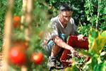 Le guide de la permaculture au jardin de Carine Mayo, éditions Terre Vivante