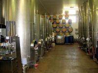 vinification fermentation
