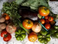 panier de légumes claude aubert expression d'intérêt collectif
