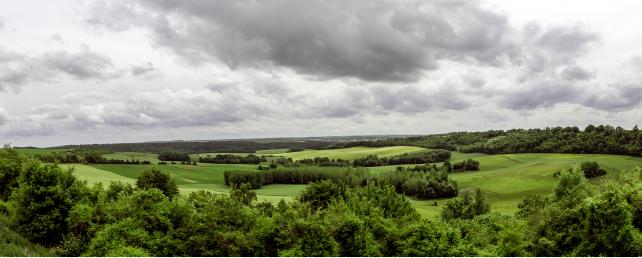 agroforesterie- credit Yann Caradec