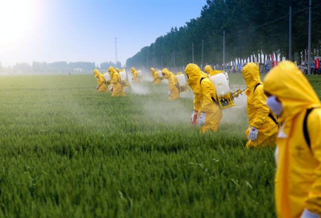 Pesticides et Biodiversité