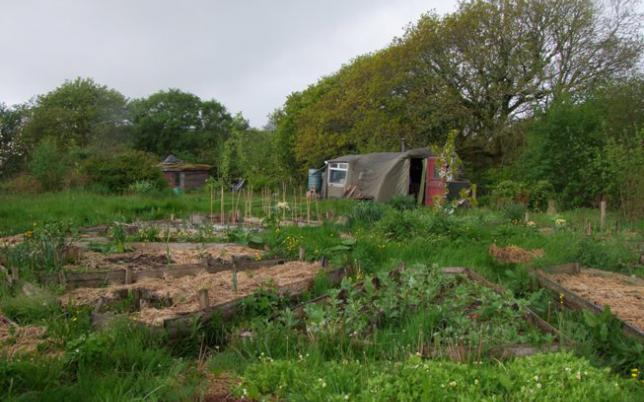 jardin mandala Landmatters